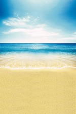 Photo Backdrop - Beach