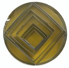 Cutter - Square 7 Pc 10Cm - Tin